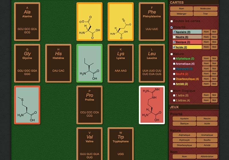 Serious-game-jeux-pour-apprendre-acides-amimes