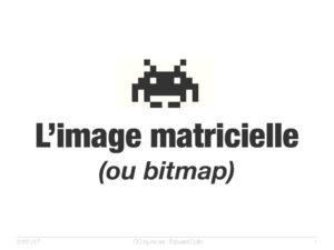 L'image matricielle (ou bitmap)