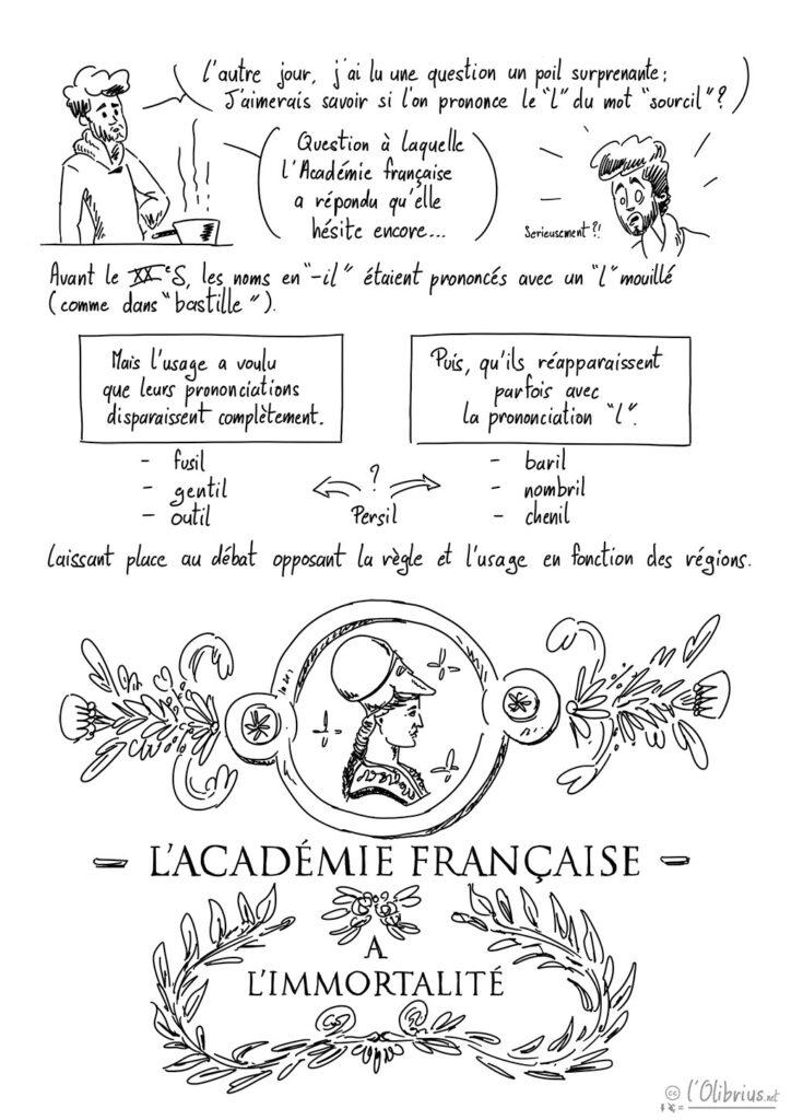 Academie-francaises-les-immortels-1