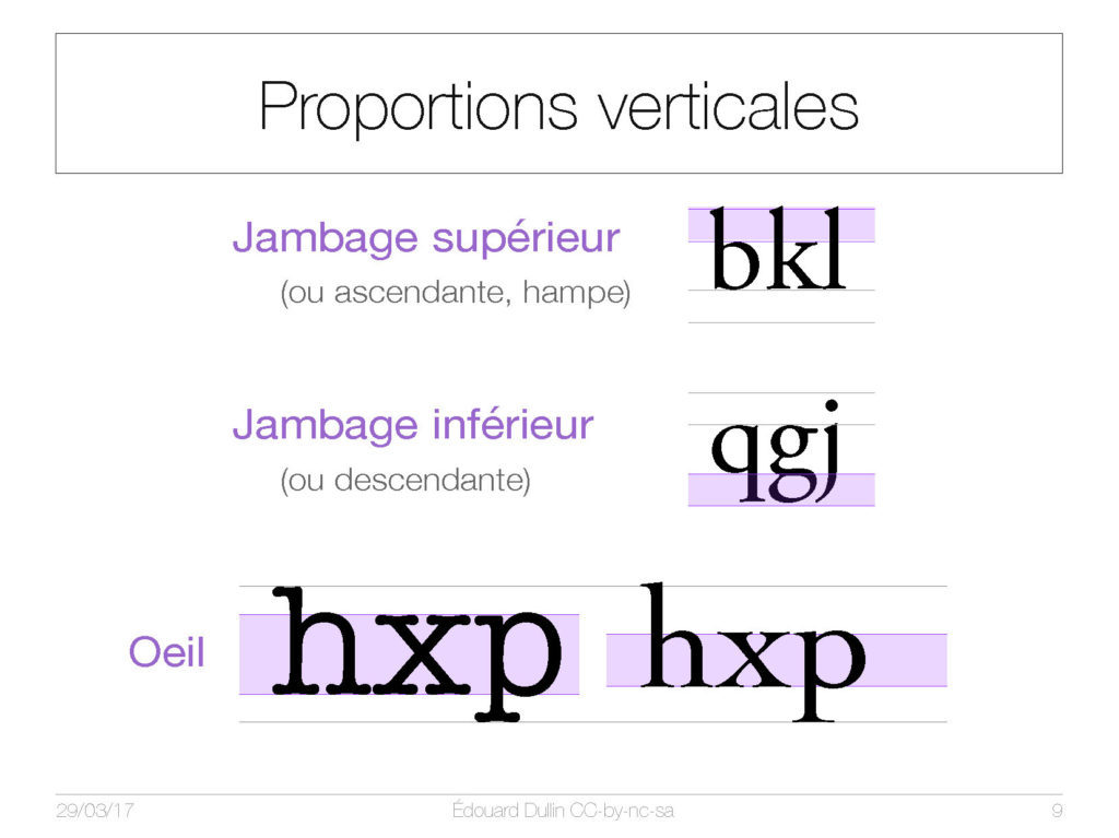 Proportions verticales